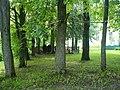 Братская могила и памятник в Льялово. Вид сбоку.jpg