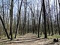 В парке Олимпик - panoramio.jpg