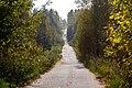 Дорога на Кулигино - panoramio.jpg