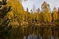 Золотая осень, Карьер в Тригорье - panoramio.jpg