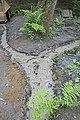 Мошляйка и пруды - 8.jpg
