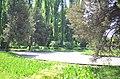 Наводницкий парк в Киеве. Фото 3.jpg