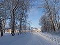 Ораниенбаум зимний. Вид на восточный флигель и Японский павильон Большого Дворца.jpg