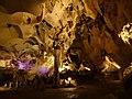 Пещера Орлова чука.jpg
