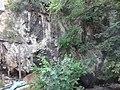 Природни споменик Миоценски спруд Ташмајдан 010.JPG