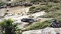 Скално образувание - panoramio.jpg