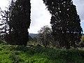 גבעת העמדות ברכס נשר ההיסטורי - שרידי רצפת ויסודות בית העם (1).jpg