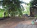 อำเภอปักธงชัย บ้านน้อง Ban Nong - panoramio - CHAMRAT CHAROENKHET (4).jpg