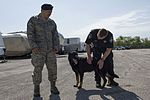 ◾902nd SFS partners with local K-9 unit for training exercise 160328-F-XF990-001.jpg