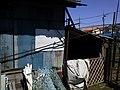 マルフク看板 川崎市多摩区宿河原2丁目 - panoramio.jpg
