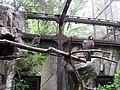 上野動物公園, Ueno Zoo(Ueno Zoological Gardens) - panoramio.jpg