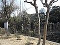 南京莫愁湖公园 - panoramio (14).jpg