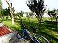 渭城 正阳街道河堤路上看渭河和西安机场专用高速 05.jpg