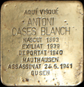 01 Torà - ANTONI CASES BLANCH.png