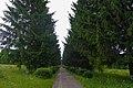 05-210-5020 Severynivka park SAM 1876.jpg