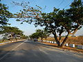 05748jfCity San Fernando Bulacan Lands Highways Pampangafvf 29.JPG
