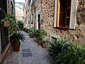 07109 Fornalutx, Illes Balears, Spain - panoramio (20).jpg
