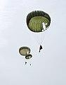 10th SFG parachute Mali.jpg