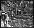 111-SC-196619 - Weary infantrymen take a brief rest on a slope in the Hurtgen forest in Germany. Left to right, Pfc. Maurice Berzon, Buffalo, N.Y., SSgt. Bernard Spurr, Newark, Ohio, and SSgt. Harold Clessler, Ashland, Pa.jpg
