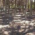 11288 Kos Jewish Cemetery.jpg