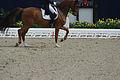 13-04-21-Horses-and-Dreams-Fabienne-Lütkemeier (18 von 30).jpg
