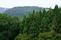130914 Mount Kannabe Toyooka Hyogo pref Japan04n.jpg
