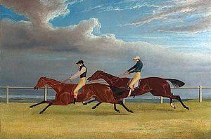Mameluke (British horse) - The 1827 St Leger: Matilda beats Mameluke.