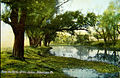 1910 -Jordan Creek Postcard.jpg