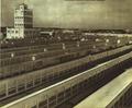 1952-11 1952年哈尔滨亚麻厂.png