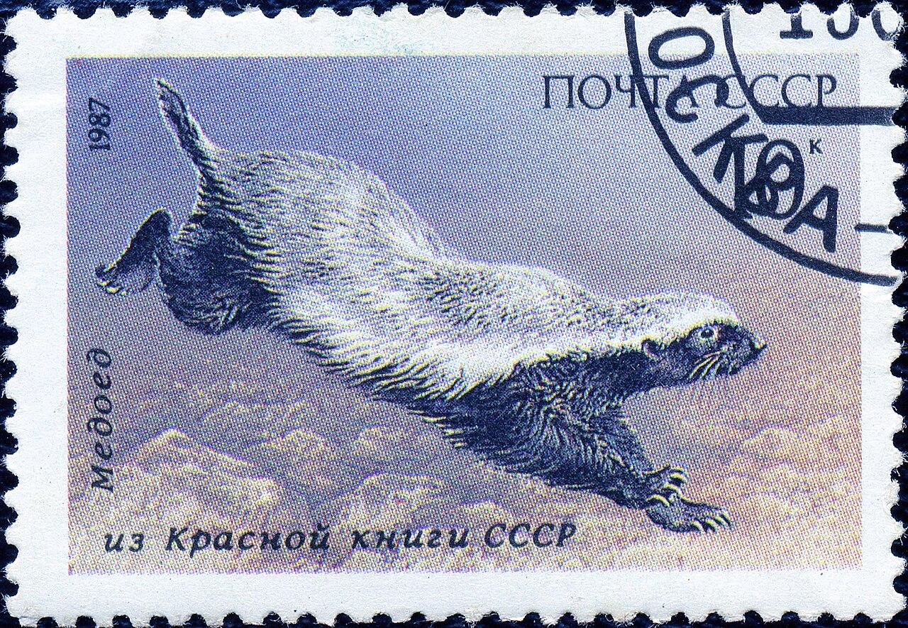https://upload.wikimedia.org/wikipedia/commons/thumb/6/66/1987_CPA_5829.jpg/1280px-1987_CPA_5829.jpg