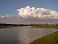 2007-03-08 16.41 Driel, zicht op de Rijn foto1.JPG