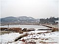 2008冰灾过后 - panoramio.jpg