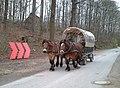 2008-04-12 Freilichtmuseum Detmold (1).jpg