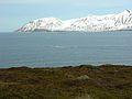 2008-05-22 16-18-13 Iceland - Gunnólfsá.JPG