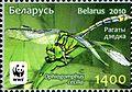 2010. Stamp of Belarus 26-2010-03-08-m3.jpg