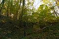 2011-11-01 14-30-31-ft-roppe.jpg