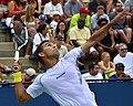 2013 US Open (Tennis) - Qualifying Round - Victor Estrella Burgos (9737274595).jpg