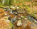2014-04-20 16-47-12 ruisseau-gde-cascade-tendon.jpg
