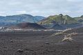 2014-09-16 11-10-10 Iceland Suðurland - Skogar.jpg