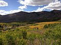 2014-09-25 14 08 31 View across ponds, Aspen and Subalpine Fir forest in Copper Basin from Charleston-Jarbidge Road (Elko County Route 748) about 11.3 miles north of Charleston in Elko County, Nevada.jpg