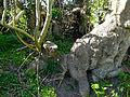 20140416 Essenstoof2 Geldringensteeg.jpg