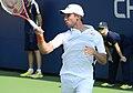 2014 US Open (Tennis) - Tournament - Igor Sijsling (14911926038).jpg
