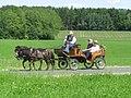 21te Rammenauer Schlossrundfahrt der Pferdegespanne (118).jpg