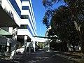 2601 Blair Stone Road, Tallahassee Pedestrian Bridge and Parking Deck.JPG