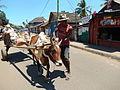 2 Ambatoloaka village Nosy Bé 2013 !.JPG