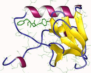 Neurophysin II cleavage product of the coding protein of AVP gene