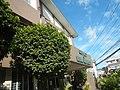 4132Maysan Road Malinta, Valenzuela City 40.jpg
