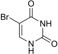 5-Bromouracil structure.png