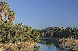 5. Séquia de Sant Llorenç (Parc Natural de l'Albufera, País Valencià).jpg