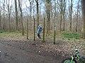 7340 Colfontaine, Belgium - panoramio (1).jpg